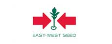 East West Seed